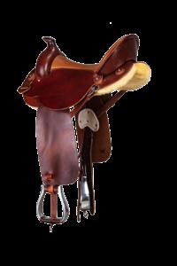 Westernsattel Endurance mit Horn: leicht von hinten
